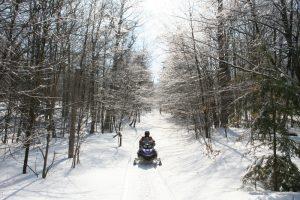 snowmobiling wyoming montana